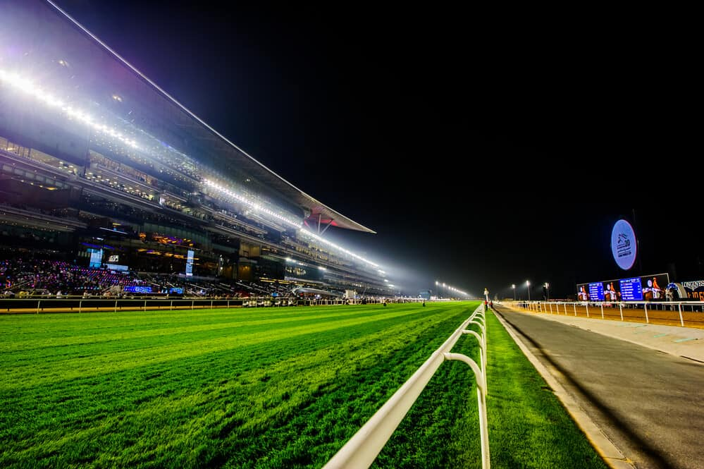 watch dubai world cup nz